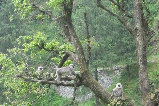 Kalatop Wildlife Reserve