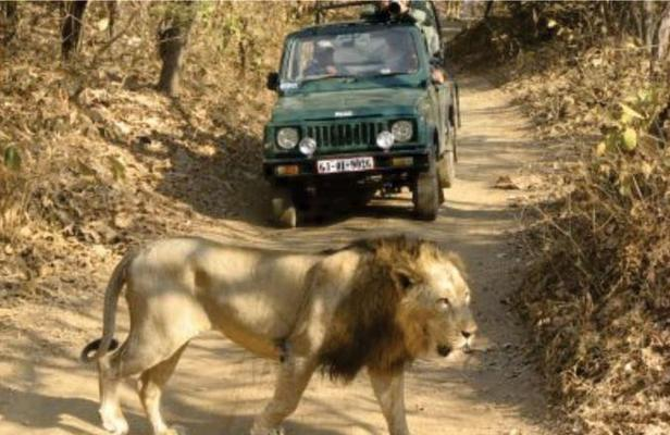 Sasangir tour package, Sasangir tour, Sasangir package,
