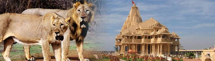 Somnath Holiday Package