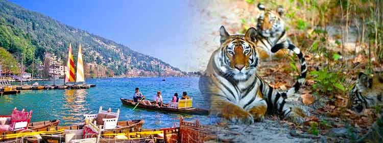 Book Trip to corbett nainital Tours Travel Packages Ho