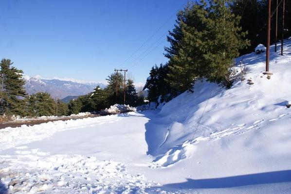 Patnitop Tours, Patnitop packages, Patnitop holidays, h