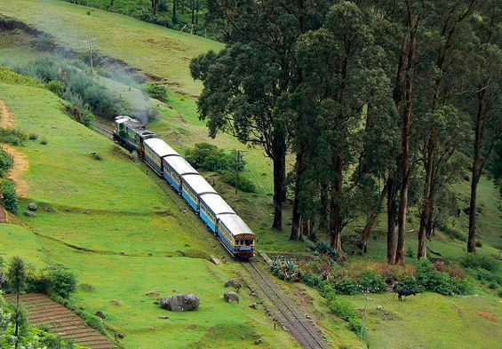 Ooty Package, Ooty tour packages, Ooty holiday packages