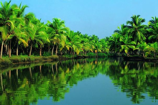 Alleppey packages, Alleppey tour packages, Alleppey Tou