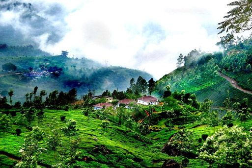 Mysore Coorg Tour Packages
