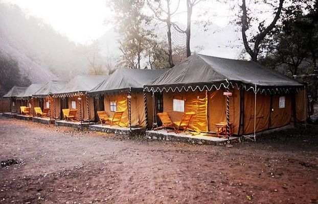 Cradle of Life Jungle Swiss Camp  Rishikesh