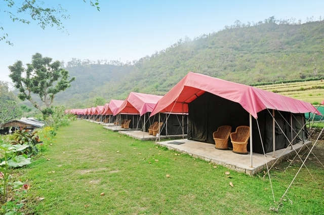 Camp Majestic