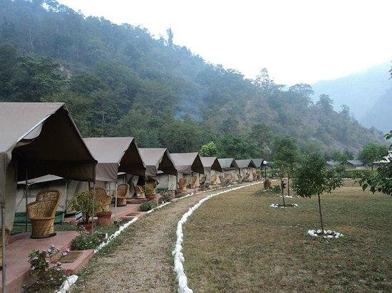 Himalayan Bear Stream Camp