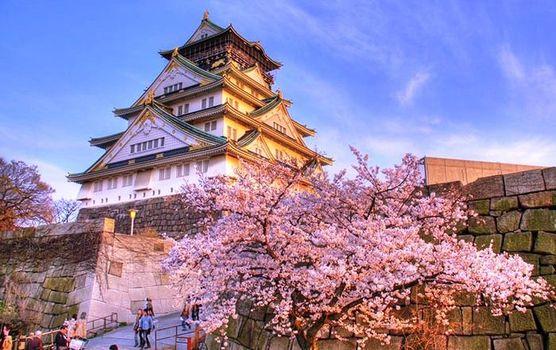 Japan Travel Blog, Latest Articles on Japan, Japan Photos